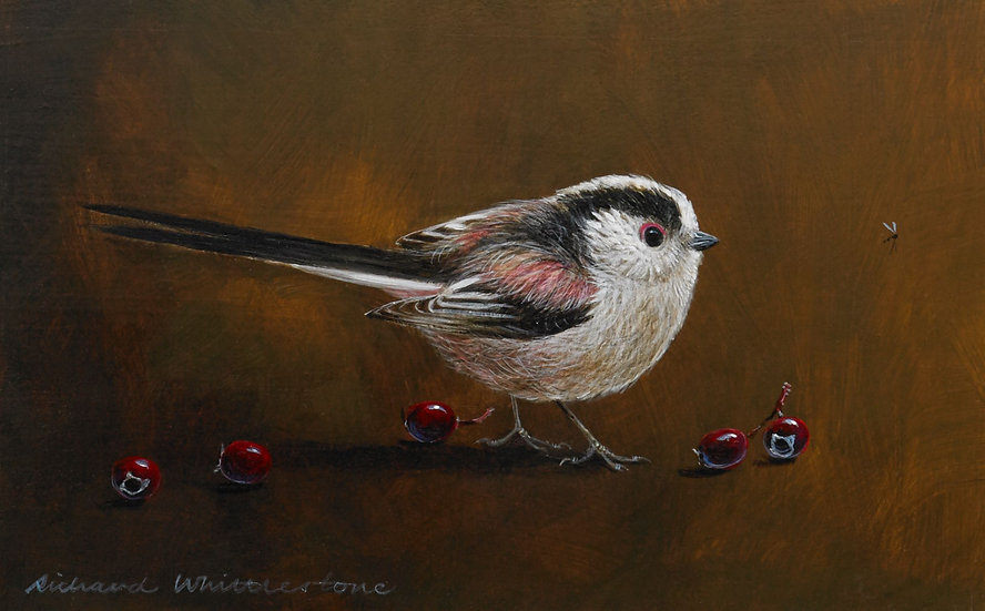 Long-tailed Tit Berries Bird Painting by Wildlife Artist Richard Whittlestone