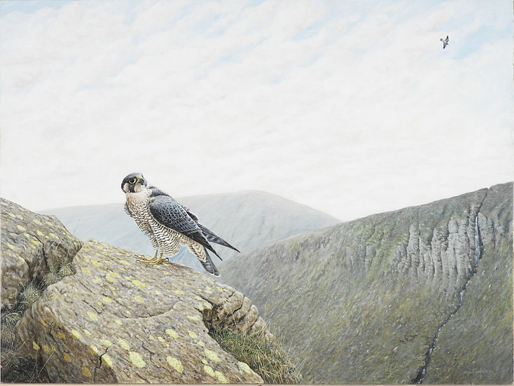 Call of the Wild Bird Painting by Wildlife Artist Richard Whittlestone
