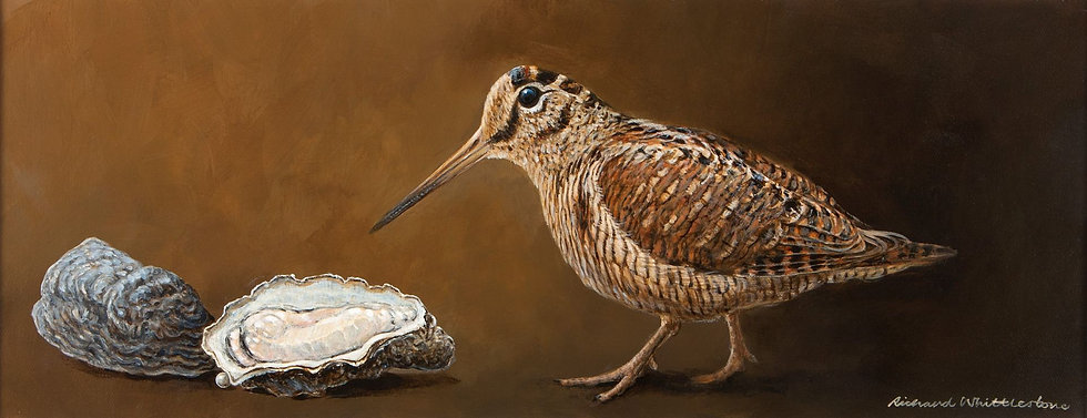 Woodcock Oysters Painting by Wildlife Artist Richard Whittlestone