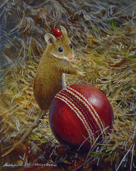 Tommy Cooper Mouse Over Boundary Print by Wildlife Artist Richard Whittlestone