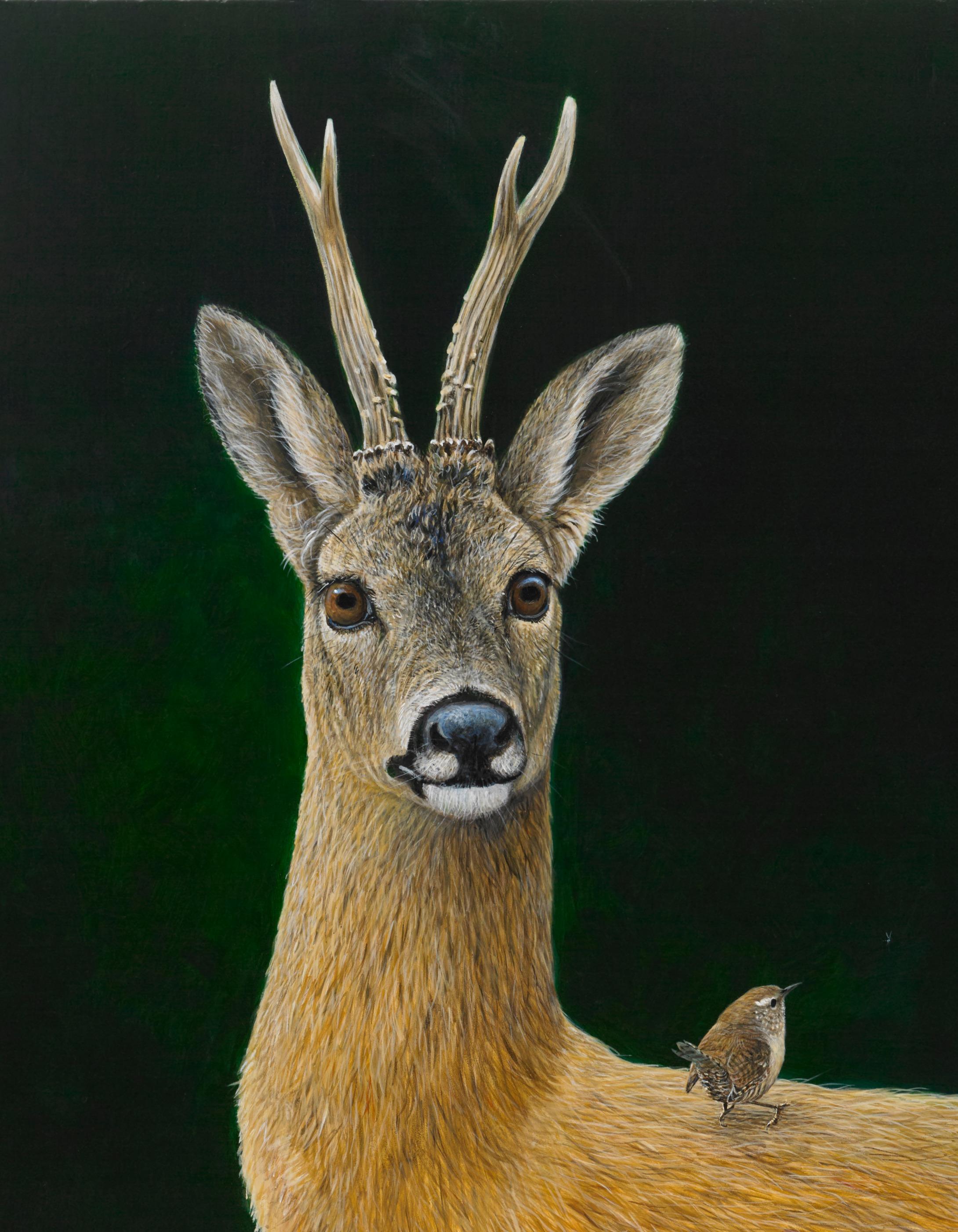 Roe Buck and Wren