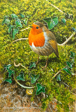 2840 Robin with a Snail