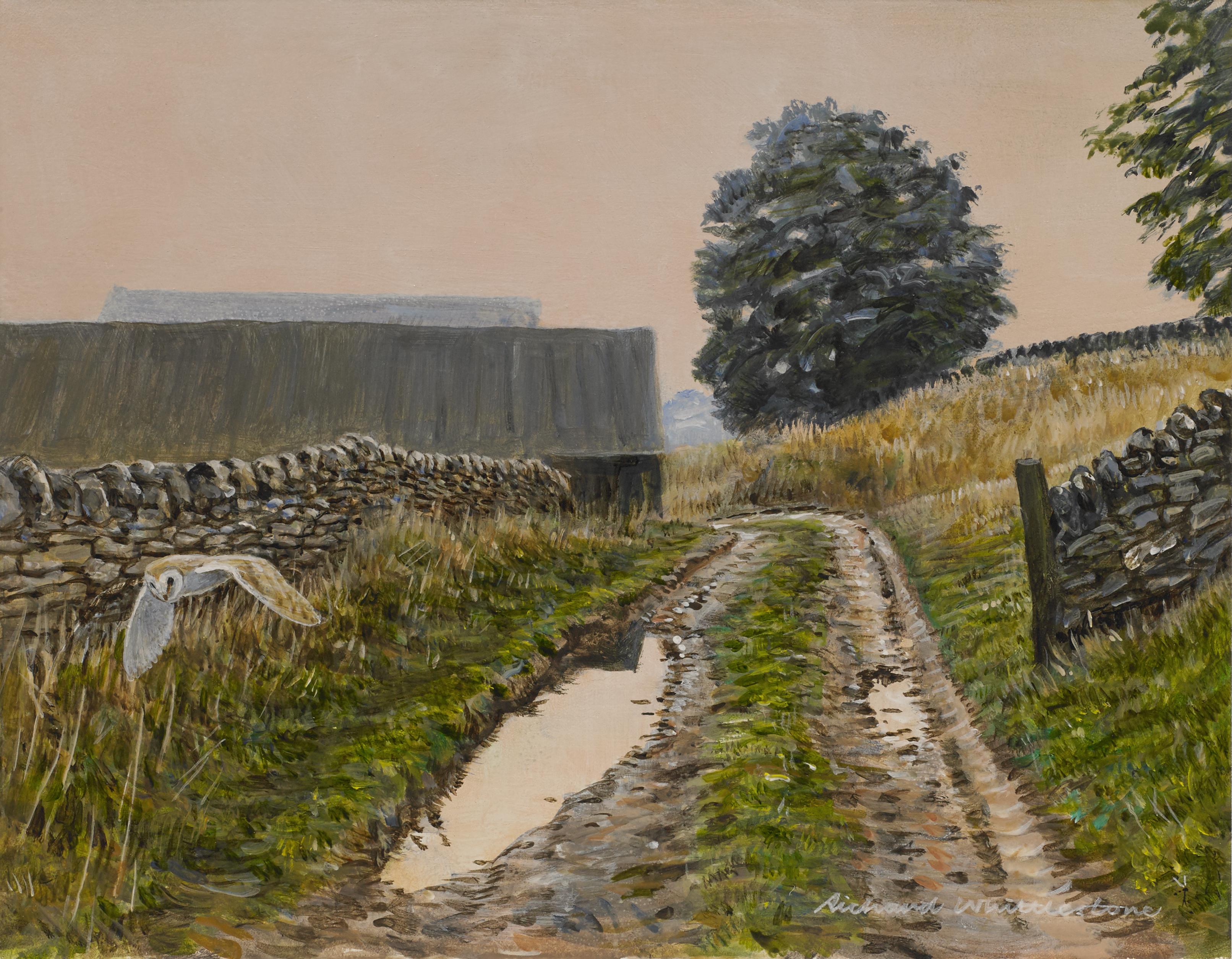 Muddy Puddle Lane