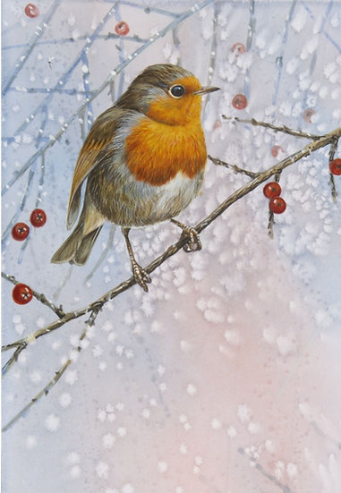 Wildlife Greetings Cards by Artist Richard Whittlestone (Frosty Robin)