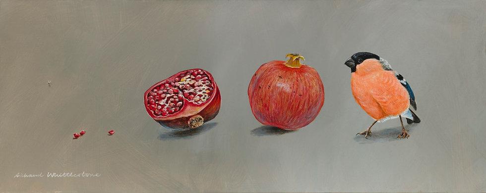 Bullfinch Pomegranates Bird Painting by Wildlife Artist Richard Whittlestone