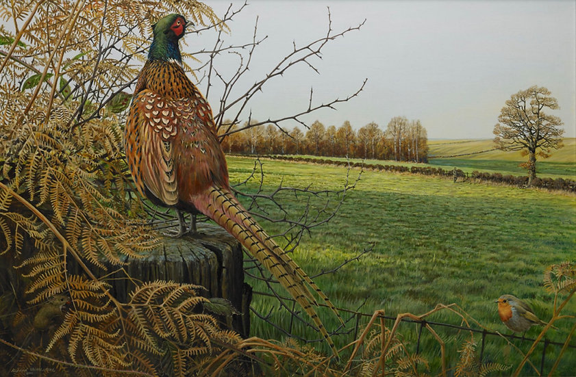 As I Walked Out Bird Print by Wildlife Artist Richard Whittlestone