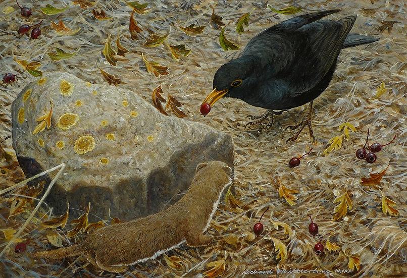 Dinner for Two Painting by Wildlife Artist Richard Whittlestone