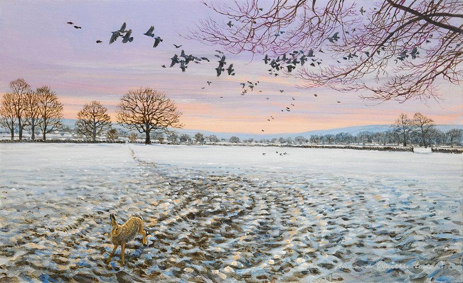 Rooks Over Winter Fields