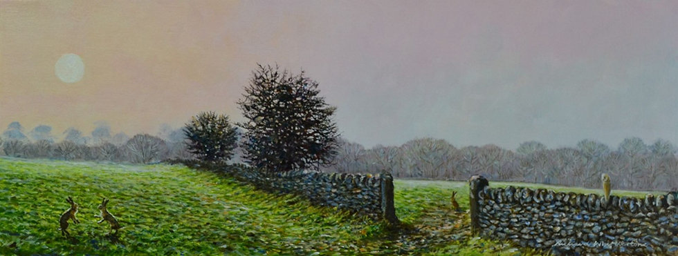 Hares First Light Print by Wildlife Artist Richard Whittlestone