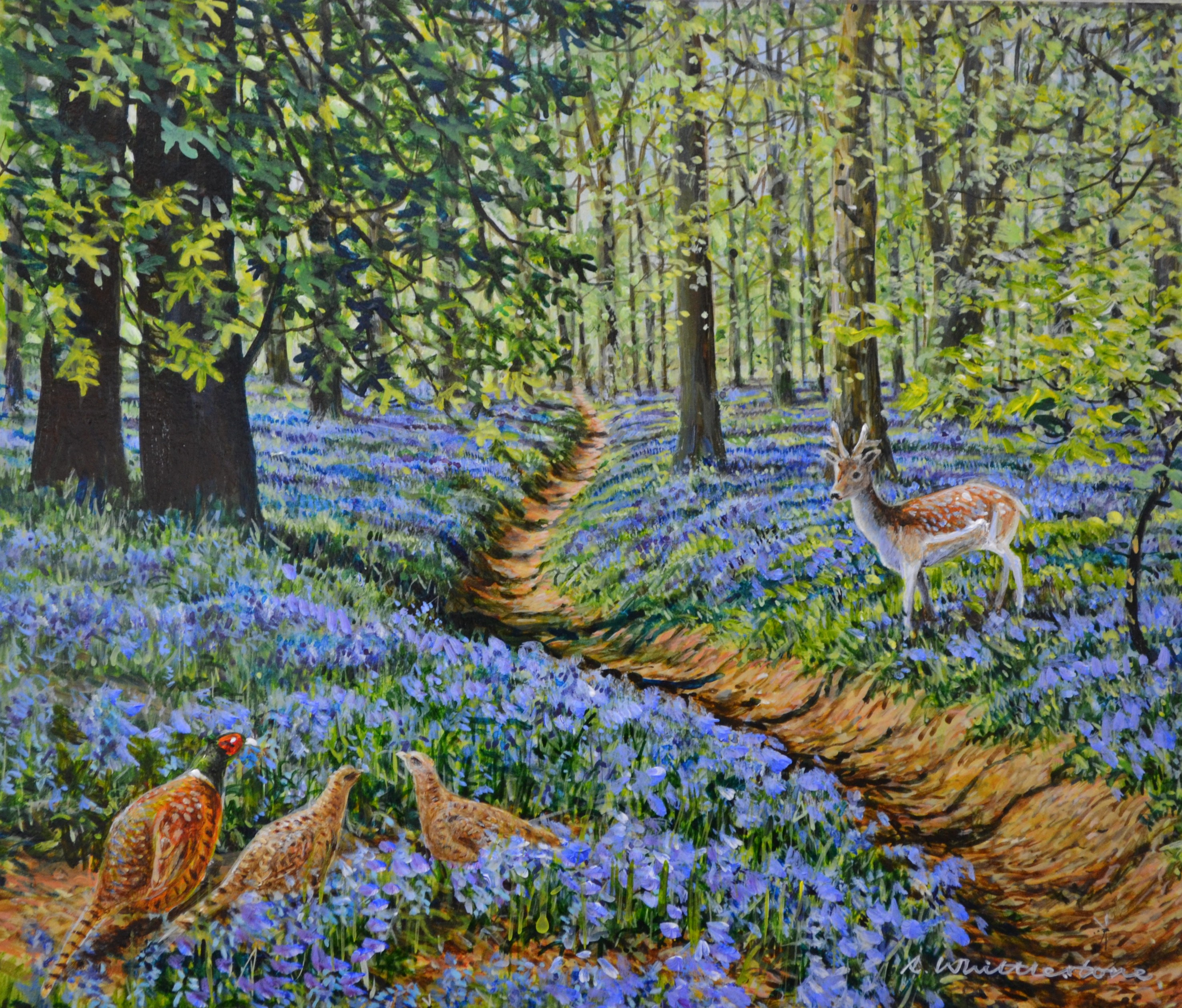 In the Bluebell Wood