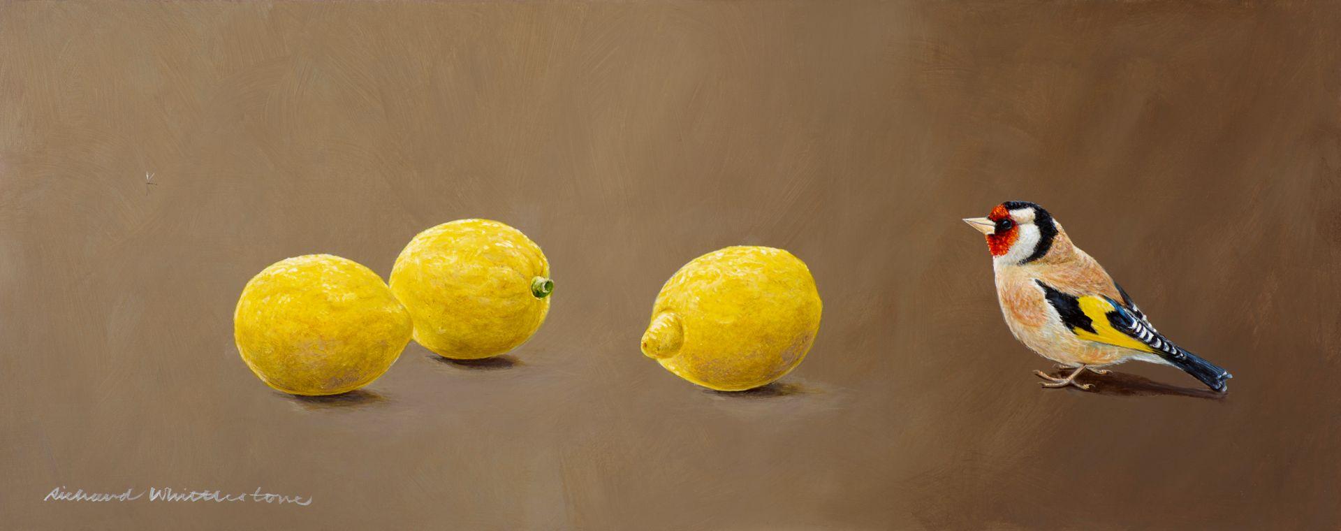 Richard-Whittlestone-Prints-Goldfinch-wi
