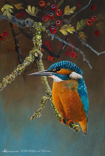 October Kingfisher