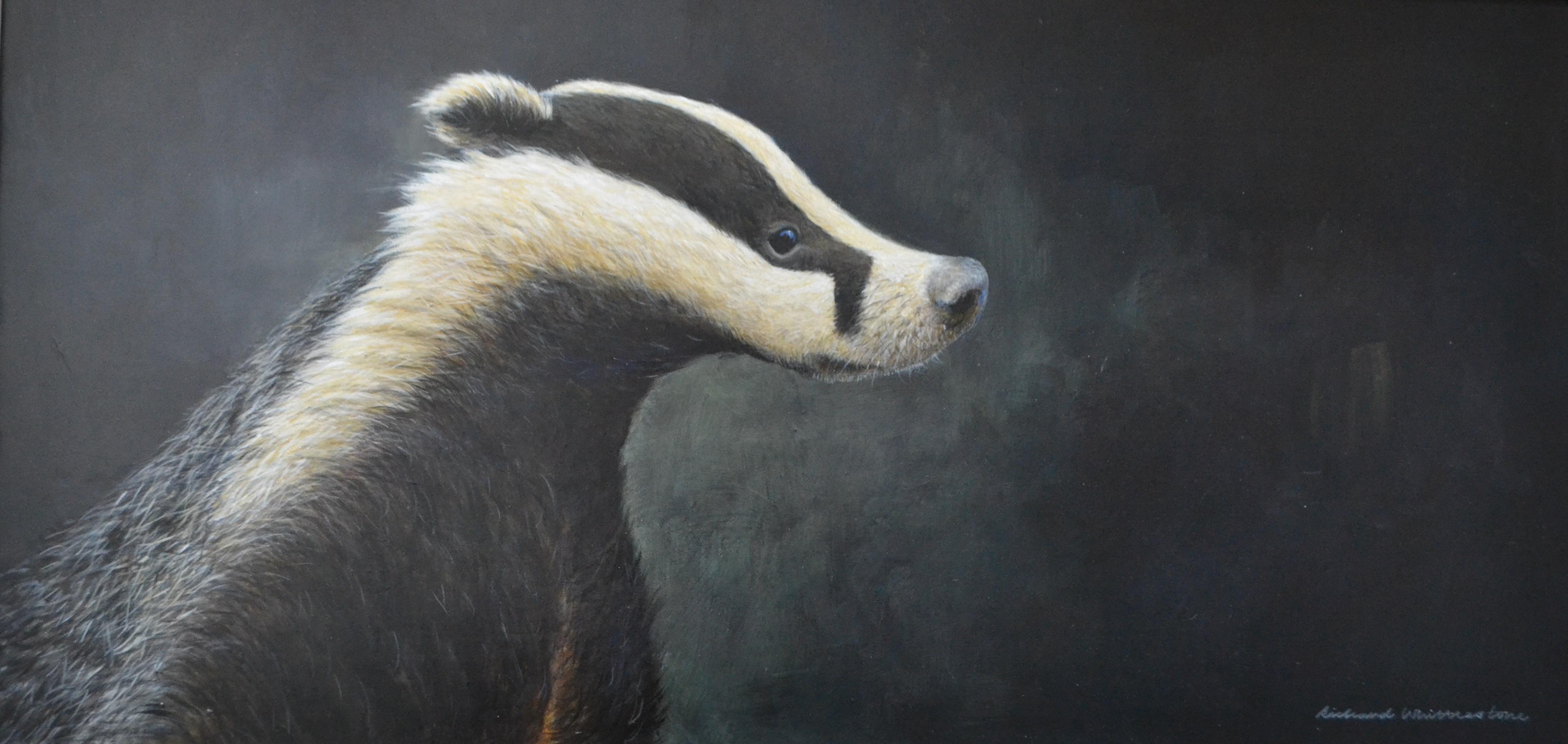 Portrait of a Badger