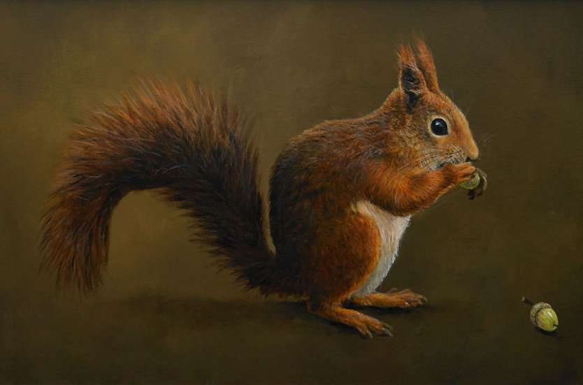 Red Squirrel and Acorn