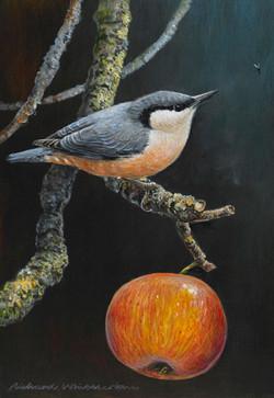 Richard-Whittlestone-Prints-November-Nut