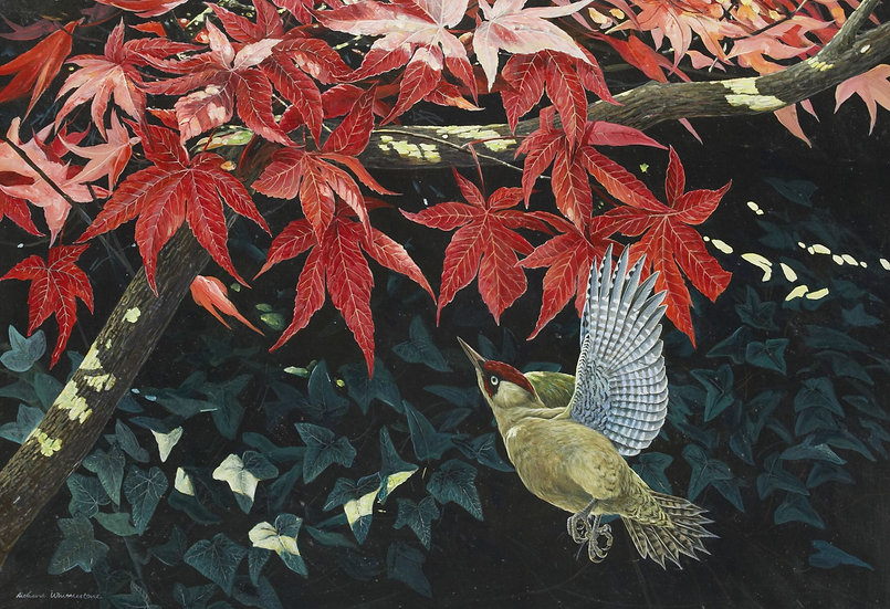 Wildlife Greetings Cards by Artist Richard Whittlestone (Secret Garden)