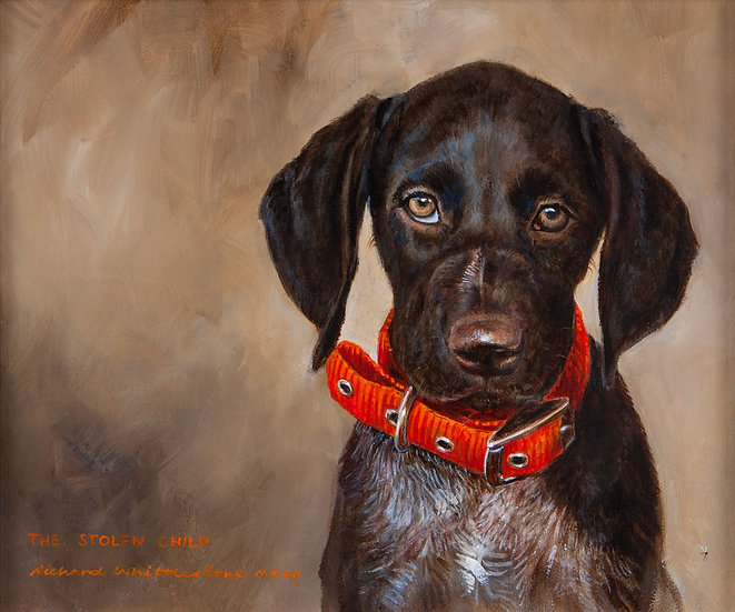 Stolen Child Dog Print by Wildlife Artist Richard Whittlestone