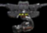 Dactylcam Pro