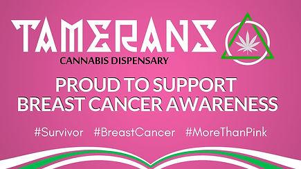 2017 Breast Cancer Awareness.jpg