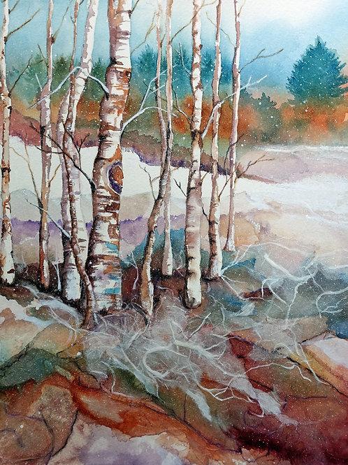 Snowy Silence Giclee Print