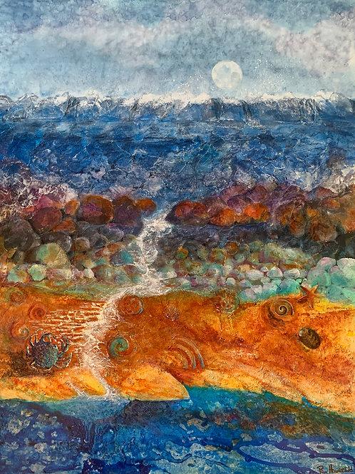 Sea Strata - Giclee Print