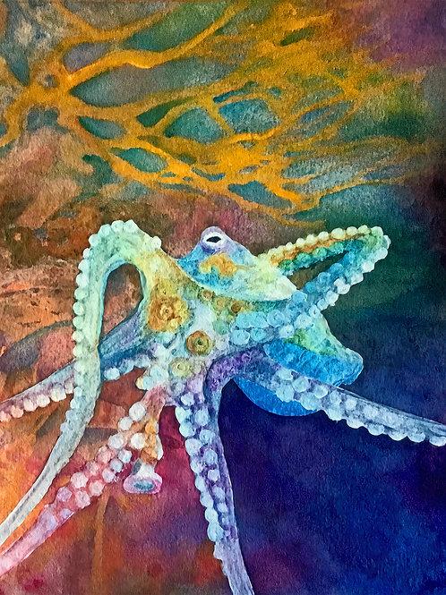 Octopus' Garden Giclee Print
