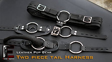 Leather-Tails Harness Full outfit