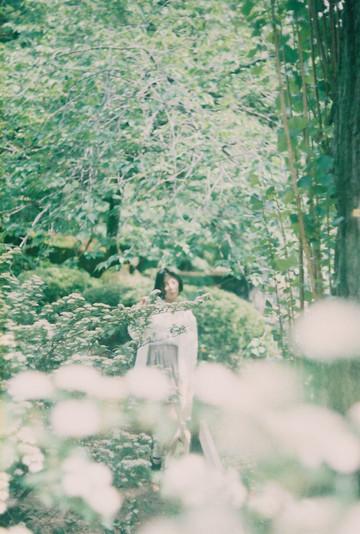 Garden of Avalon 久遠の園