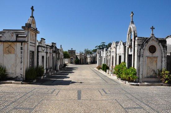 cemiterio-da-conchada2jpg