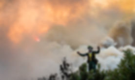 Cape Town Wildfire Sullivan Photography
