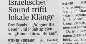 Gunned Down Horses: Live in Wiener Neunstadt, Austria 28.2.20!