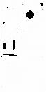 cbb 2021 - logotipo 2.png