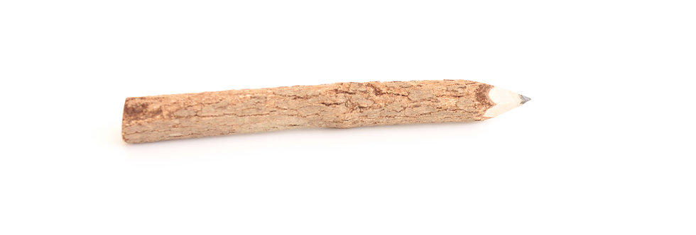 Mini rustic twig pencil