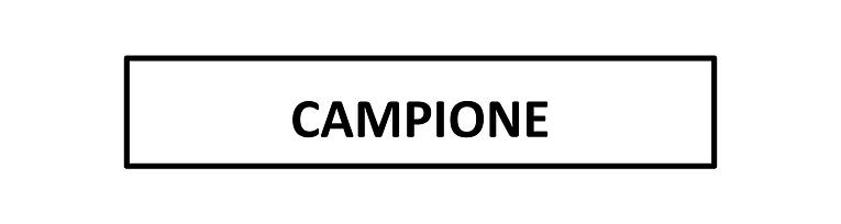 CAMPIONEBANNER.png