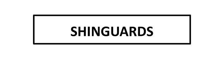 SHINGUARD BANNER.png