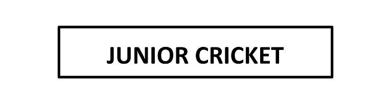 JNR CRICKET.png