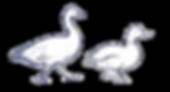 Canard_logo.png