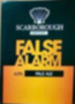 false-alarm.jpg