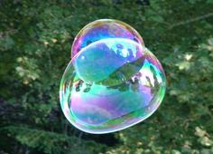 Kaj delajo LEOPARDOVE PIKE na steklu?
