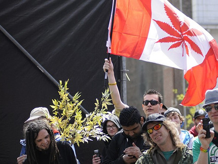 Will Legalizing Marijuana Light Up Canada's Economy?