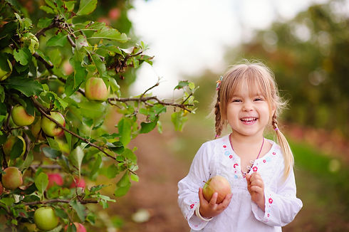 Cute little girl picking apples in a gre