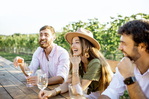 Group of a young people drinking wine an
