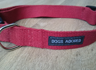 NEW!! Handmade Organic & Ecofriendly Hemp Collars and Leads