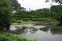 Kitanomaru-Park
