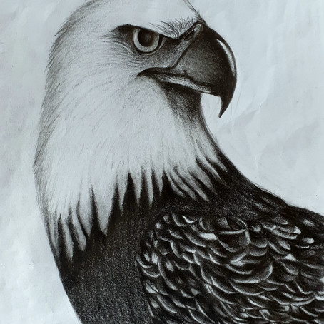 In the Eagle, there is the Wisdom of the World| Shatabda Ganguly