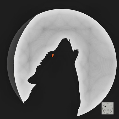 The Lone Wolf| Pramith Biswas