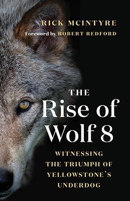 Rise of Wolf 8.jpg