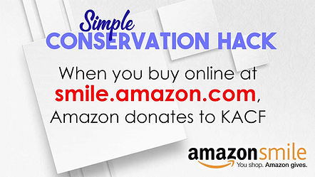 Amazon Smile Promo_jpg.jpg