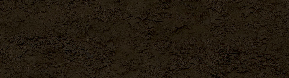 Dirt BG Narrow_jpg.jpg