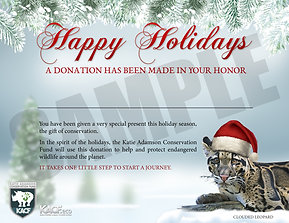 $10 Holiday Gift Certificate Donation